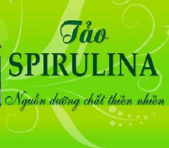 Thực phẩm chức năng tảo Spirulina tốt nhất