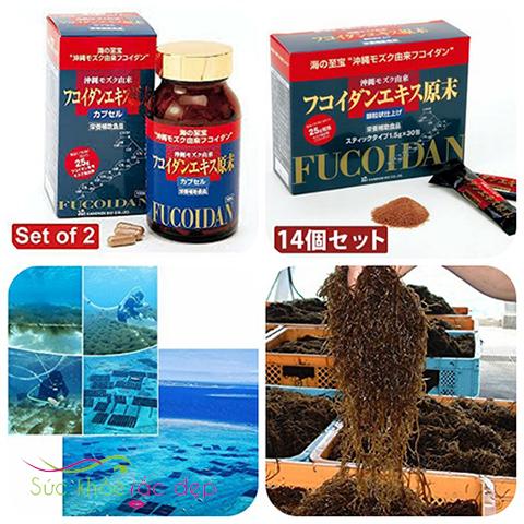 Fucoidan Okinawa Kanehide Bio có thành phần an toàn