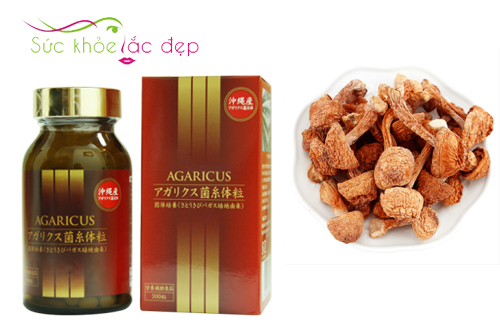 Viên thể nấm Agaricus từ nguyên liệu nấm Agaricus đảm bảo