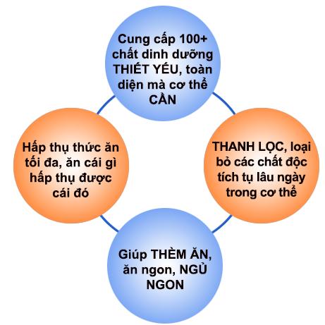 Sữa tảo giúp tăng cân an toàn Spirulina system của Việt Nam