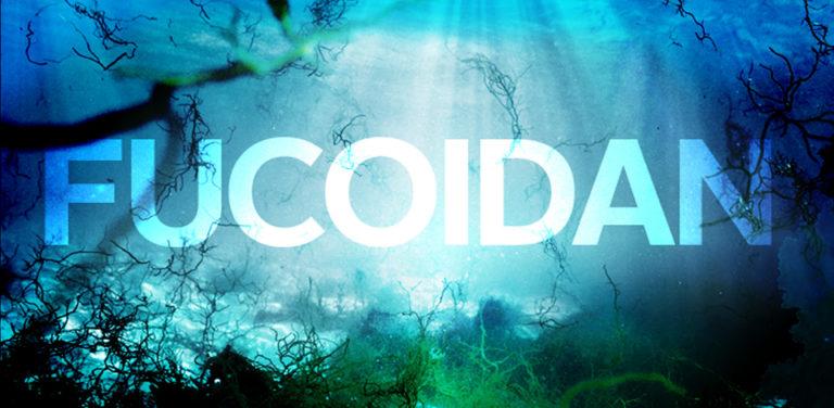 Thuốc Fucoidan