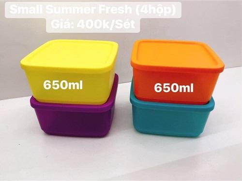 small summer fresh tupperware dung tích lớn tiện lợi khi sử dụng