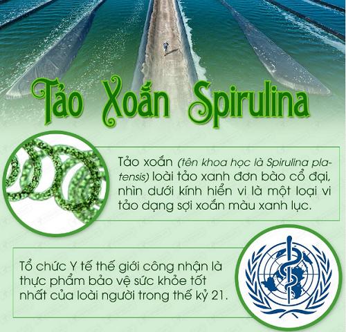 Công nhận của tốt chức Y tế Thế giới về tảo Spirulina