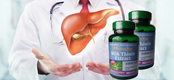 Chỉ cần uống 2 viên milk thistle 1000mg một ngày gan sẽ khỏe mạnh hơn