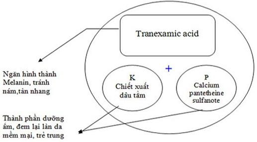 Cơ chế tác dụng của kem trị nám Nhật Bản Transino Whitening Essence Ex
