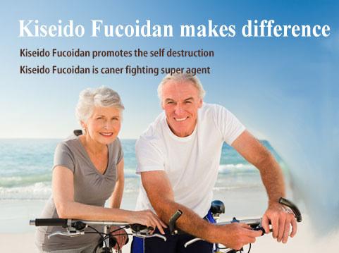 công dụng của fucoidan kiseido