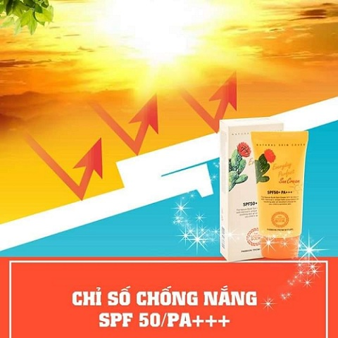 Kem Chống Nắng Everyday Perfect Sun Cream SPF50+PA+++