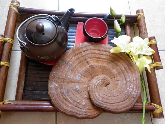 Món quà Cao linh chi – Trà linh chi tặng tết tiện dụng