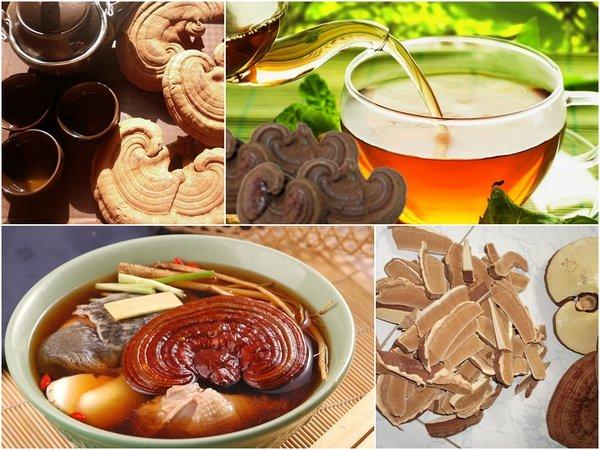 Cách dùng nấm linh chi bao tử Hàn Quốc hiệu quả