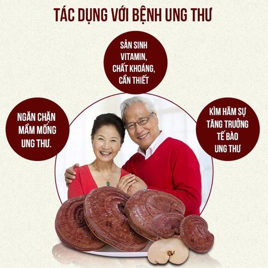 Nấm linh chi Đỏ núi đá hàn quốc 1kg cho sức khỏe