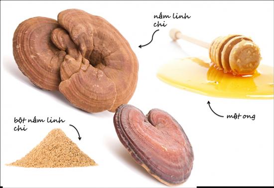 Sử dụng Nấm linh chi Đỏ núi đá hàn quốc 1kg