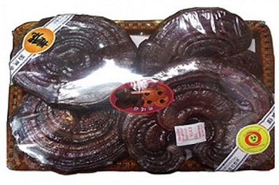Nấm linh chi Hàn Quốc tai to đóng khay chất lượng chính hãng