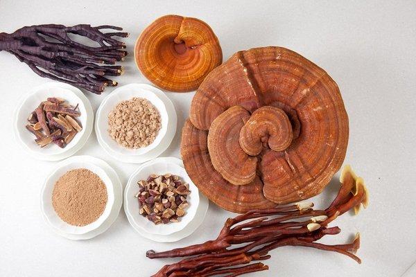 Cách dùng nấm linh chi hàn quốc uhak túi 1 kg