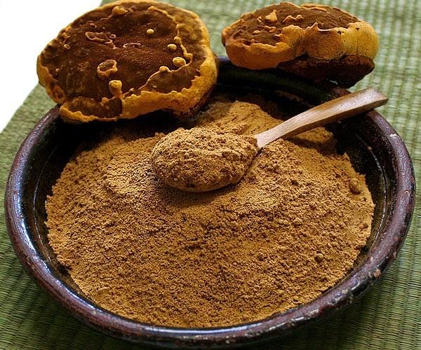 Nấm thượng hoàng vàng Hàn Quốc 0,5kg nghiền bột