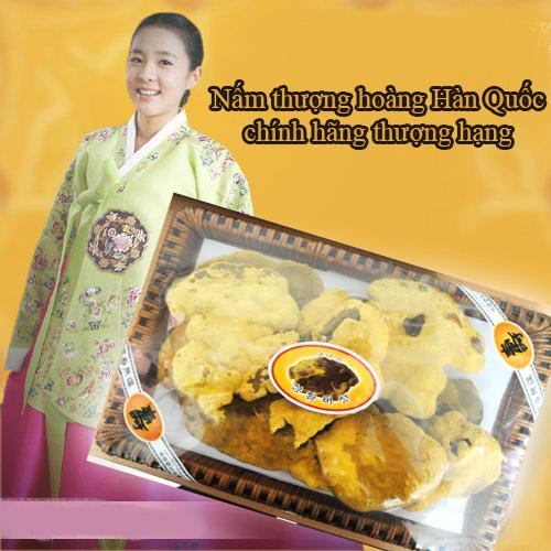 Nấm thượng hoàng vàng Hàn Quốc khay 1kg ngừa ung thư