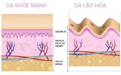 Collagen dạng gel cho làn da khỏe mạnh