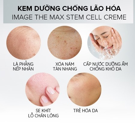 những công dụng của image skincare the max stem cell creme