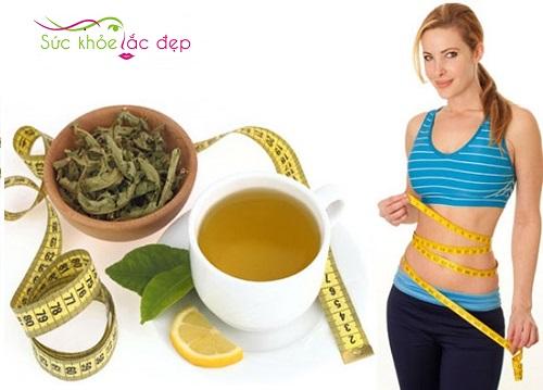 5 loại trà giảm cân hiệu quả nhất hiện nay