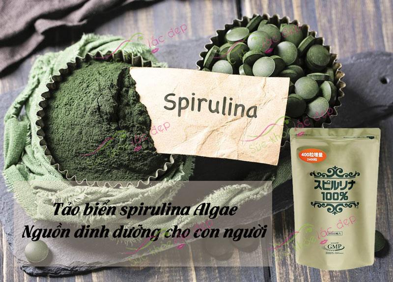 Tảo biển spirulina Algae với nhiều công dụng tuyệt vời cho sức khỏe