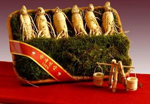 Sâm tươi Hàn quốc 6 củ trên 1kg món quà quý từ thiên nhiên