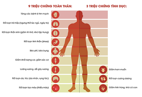 Giảm testosterone làm giảm ham muốn tình dục ở nam giới