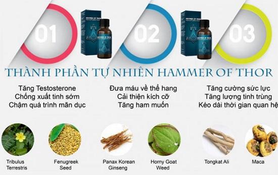 Hammer of thor 25 ml có thành phần 100 % thảo dược thiên nhiên