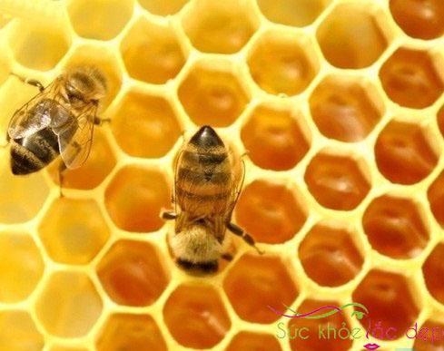 Cách sử dụng sữa ong chúa một cách có hiệu quả.