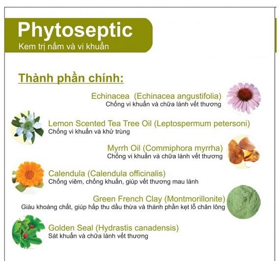 kem trị nấm và diệt khuẩn Botani Phytoseptic