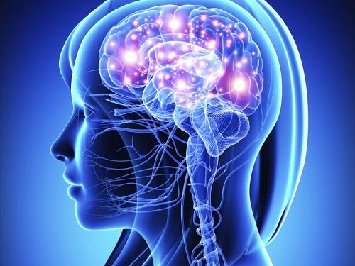 thuốc tuần hoàn máu não gingium