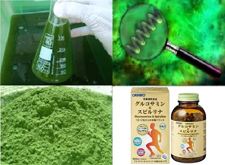 Công dụng của tảo Glucosamine Spirulina Orihiro 900 viên