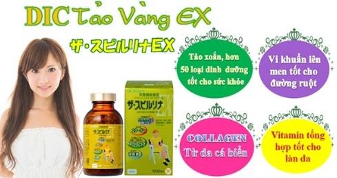 cách uống tảo vàng ex