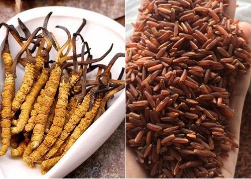tinh hoa trùng thảo dạng lát bào chế từ đông trùng hạ thảo và gạo lứt
