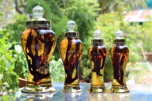 Top 5 loại rượu ngâm tốt cho sức khỏe được ưa chuộng nhất hiện nay