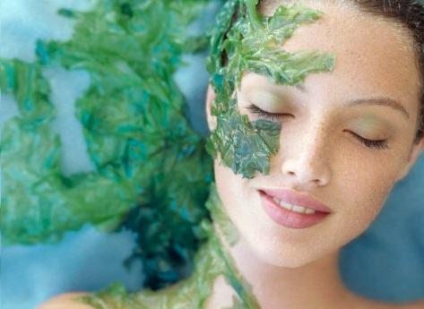 Công dụng của tảo biển Nhật bản trong việc làm đẹp da