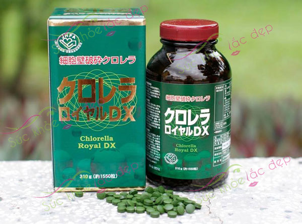 Tảo lục Chlorella chứa hàm lượng dinh dưỡng cao, chứa nhiều khoáng chất