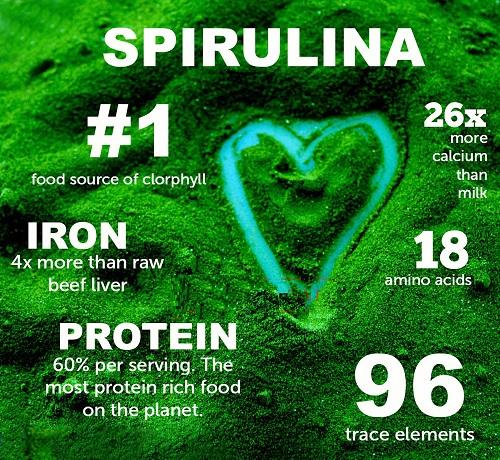 Giá trị dinh dưỡng của Tảo Spirulina